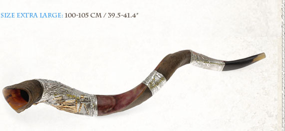 Yemenite Silver Plated Shofars Y Extra Large