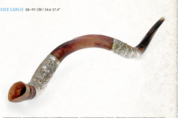 Yemenite Silver Plated Shofars Y Large